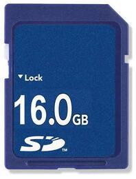Godigi GDSD16GB