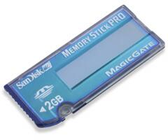 SanDisk SDMSV2048A10