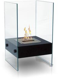 Anywhere Fireplace 90205